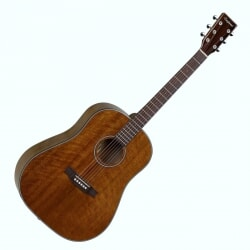 TANGLEWOOD TW40SD-D