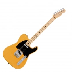FENDER AMERICAN PROFESSIONAL TELECASTER MN 3TS