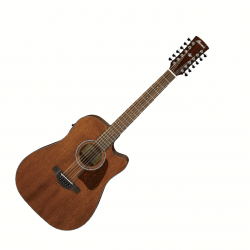 IBANEZ AW5412CE OPN ARTWOOD
