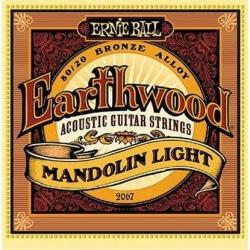 ERNIE BALL 2067 MANDOLIN LIGHT
