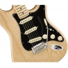 FENDER AMERICAN PROFESSIONAL STRATOCASTER MN NAT