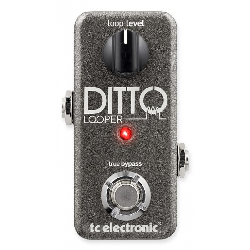 TC DITTO LOOPER