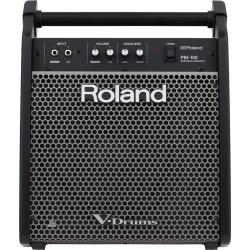 ROLAND PM-100 MONITOR DO...
