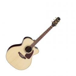 TAKAMINE P5JC - OUTLET