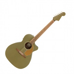 FENDER NEWPORTER PLAYER WN...