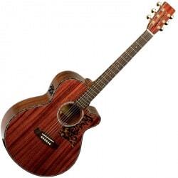 gitara akustyczna TANGLEWOOD TW 47 B