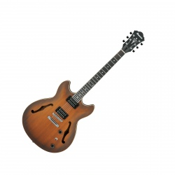 IBANEZ AS53-TF ARTCORE