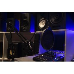 *zdjęcie w studiu poglądowe- mikrofon jest w kolorze srebrnym