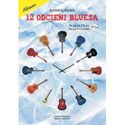 ABSONIC. 12 ODCIENI BLUESA...