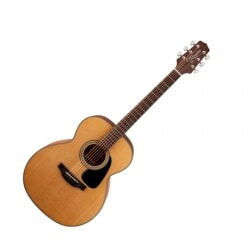 TAKAMINE GN10NS