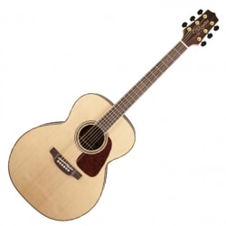 TAKAMINE GN93 NAT