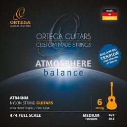 ORTEGA ATB44NM STRUNY DO...