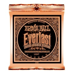 ERNIE BALL 2548